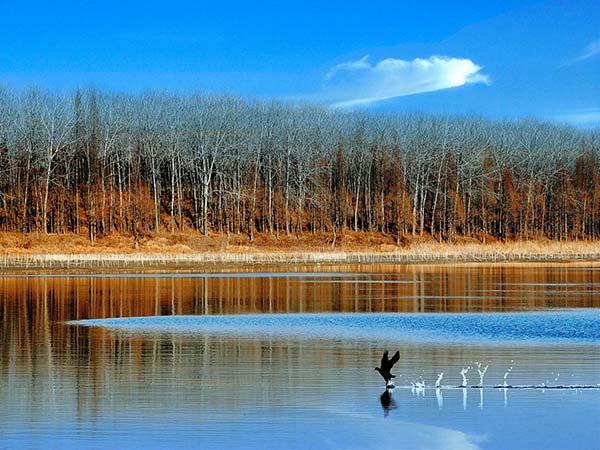 Lago Hongze