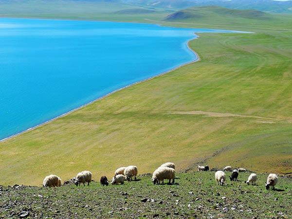 Lago Siling