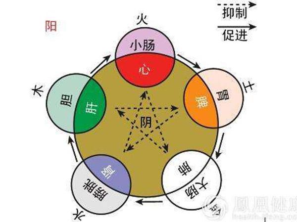 medicina china 11