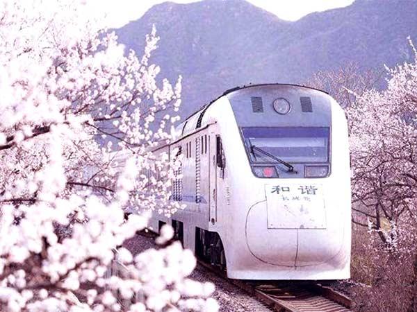 tren S2
