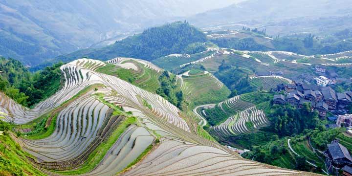 Terrazas de Arrozales de Longji