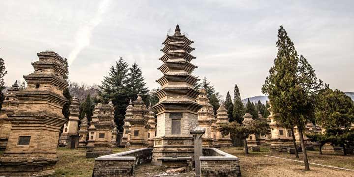 El Templo Shaolin & Bosque de Pagodas