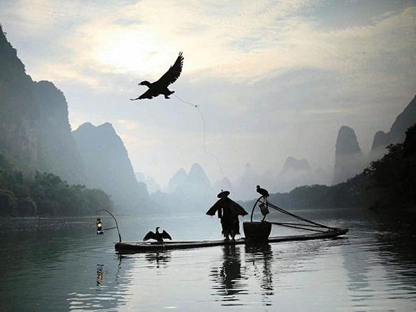 Pesca de cormorán