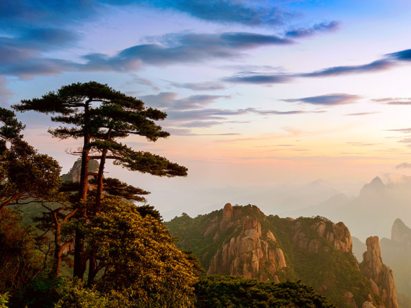 https://www.viajedechina.com/pic/city/huangshan/attractions/guest-greeting-pine-03.jpg