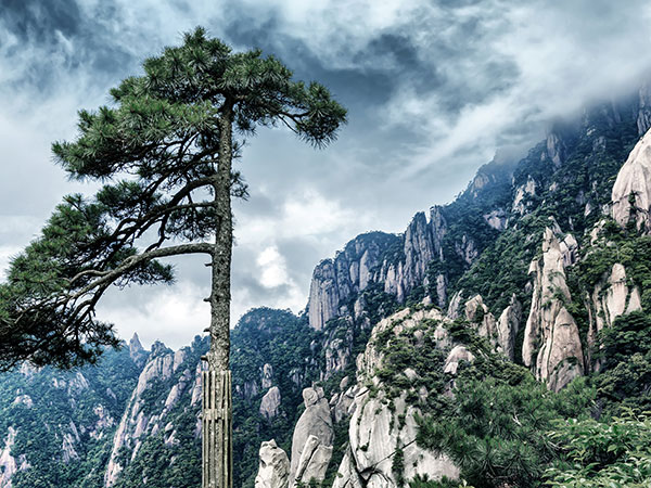https://www.viajedechina.com/pic/city/huangshan/attractions/guest-greeting-pine-04.jpg