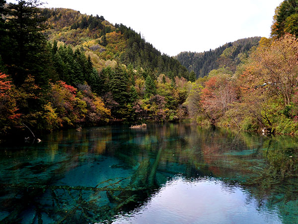https://www.viajedechina.com/pic/city/jiuzhaigou/attractions/jiuzhaigou-scenic-area-23.jpg
