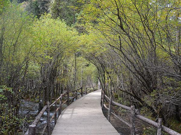 Valle de Jiuzhaigou