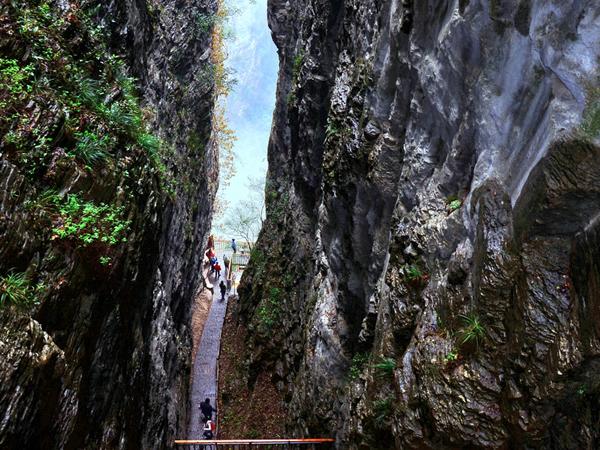Gran Cañón Zhangjiajie